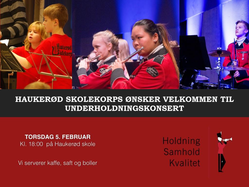 Underholdningskonsert 5. februar 2015.001