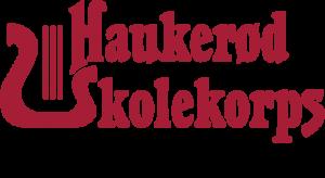 Logo med visjon_#1 HSK visjon til word og pp gjennomsiktig bakgrunn